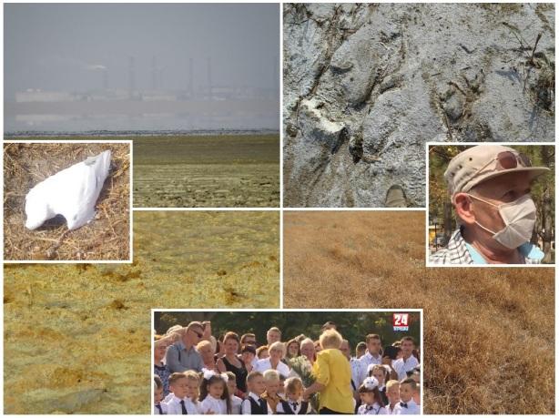 Экологическая катастрофа на Севере Крыма